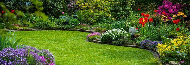 landscaping company working on lawn of a residential property in ontario canada